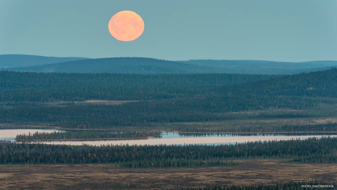 Muddus – der stillste Ort in ganz Schweden