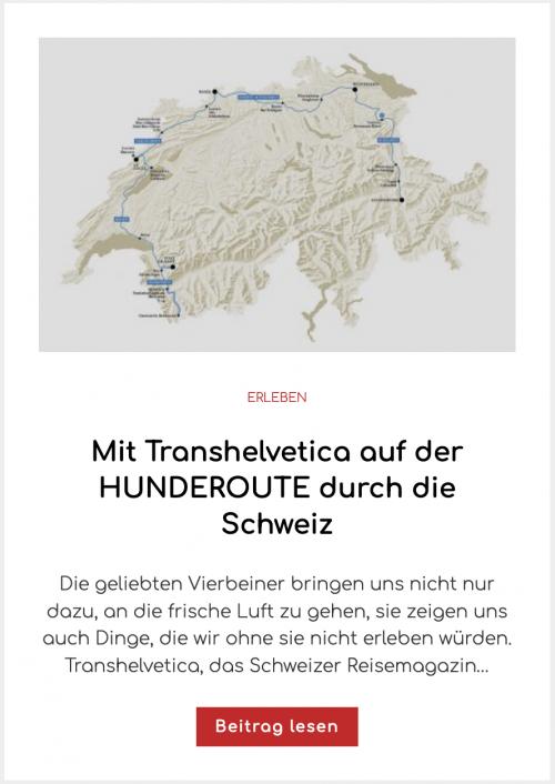 Mit Transhelvetica auf der HUNDEROUTE durch die Schweiz