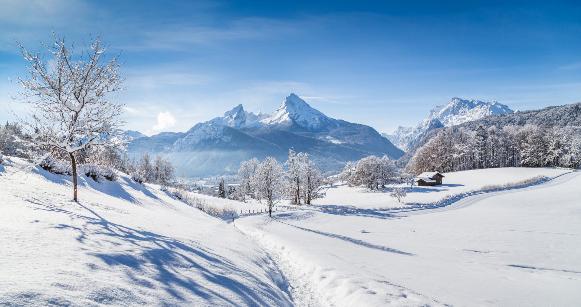 Winter wonderland scenery with hiking trail in the Alps
