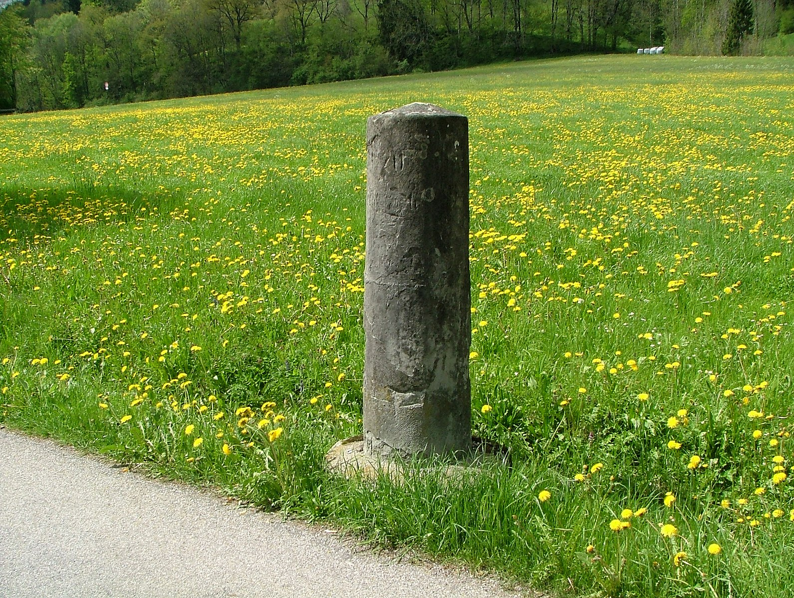 Meilenstein_an_der_Via_Salina_-_panoramio