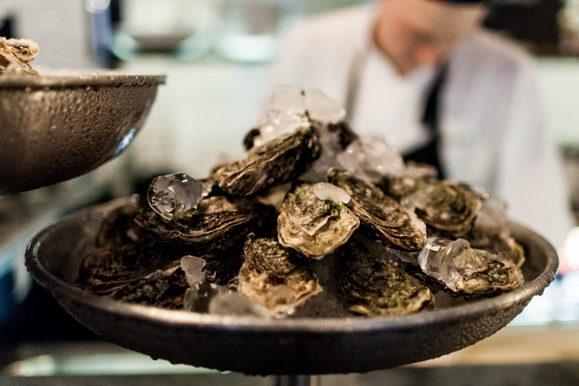 tuukka_ervasti-oysters-2217
