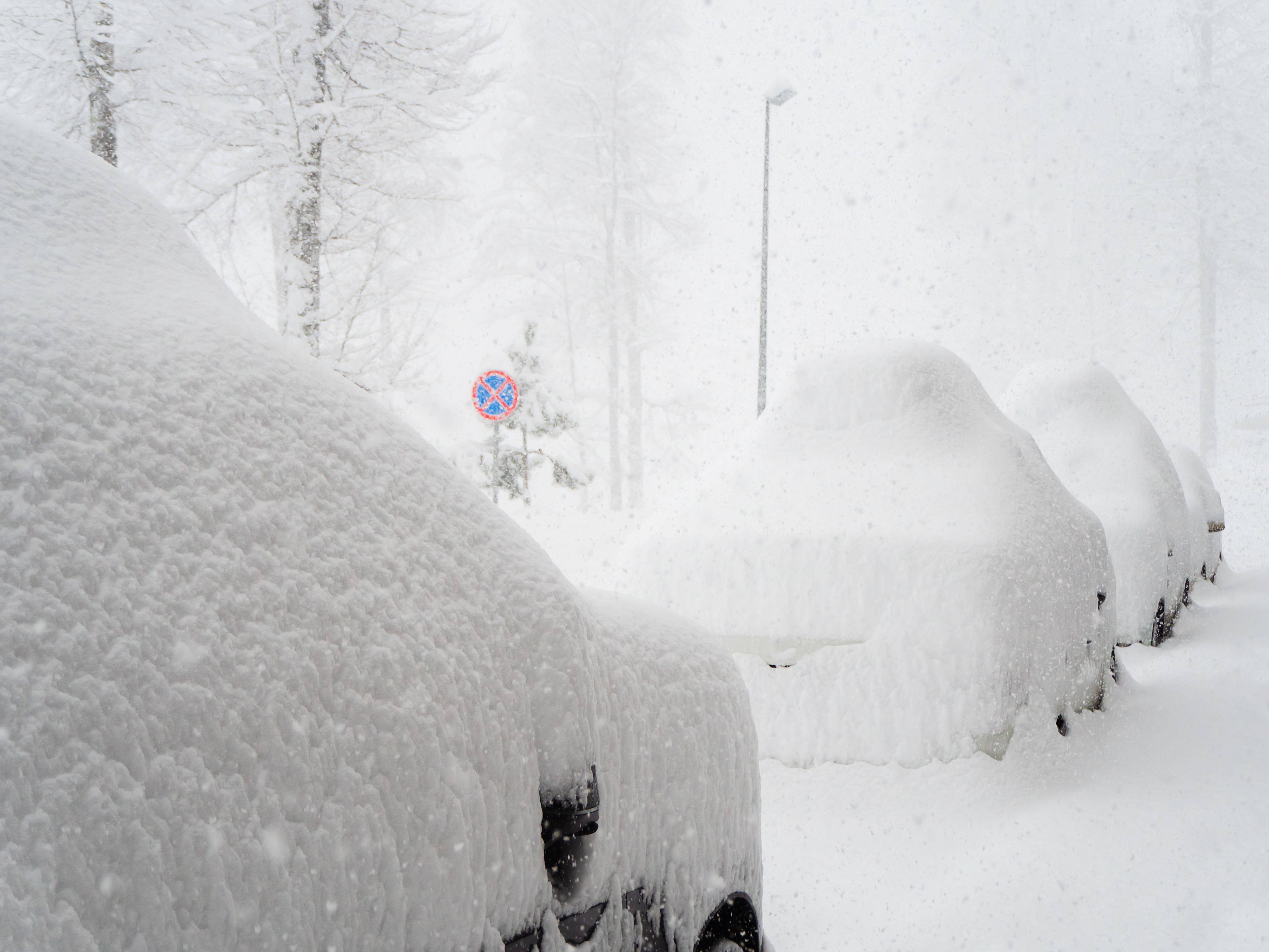 Cars heavily covered with snow are parked outside on a foggy day during a snowfall