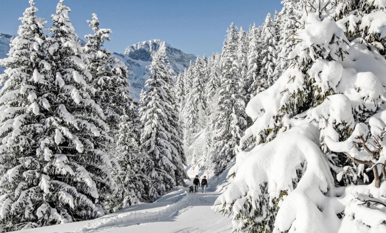 Volvo_Partner_Titlis_Winterwandern