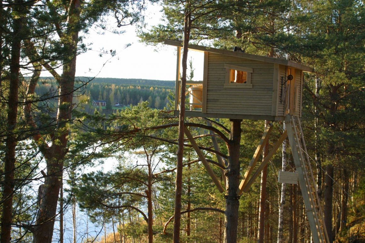 Mother_treehouse