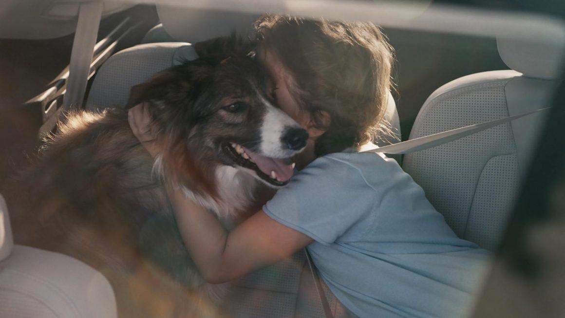 Enge_Hundbeziehung_Volvo