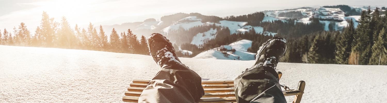 Vom «Davoser» bis zum «Velogemel» – typische Schlitten «made in Switzerland»
