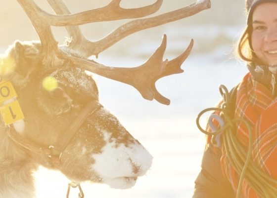 Rentiere_Jahreszeiten_Samen_Lappland_Titel