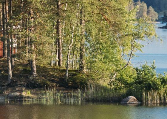 KW35_Gästrikland_iStock-1166816161_Titel