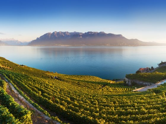 Panoramic view of the city of Vevey at Lake Geneva with vineyards of famous Lavaux wine region on a beautiful sunny day with blue sky in summer or spring season, Canton of Vaud, Switzerland. Beauty